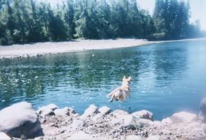 Cory jumping into the lake